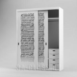 Шкаф-купе с дверьми из стекла с пескоструйной обработкой от мебельного ателье ААА-Классика