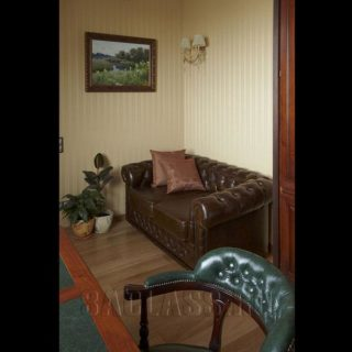 Кабинет с диваном