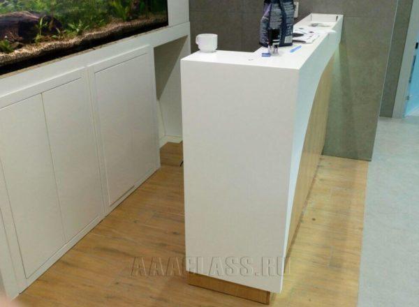 Изготовление корпусной мебели по индивидуальным проектам: стойка администратора на заказ для стоматологии БП